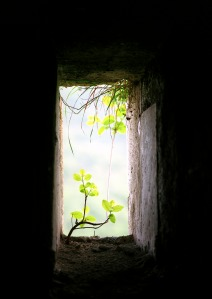 """Window for Life"", by Hrair Hawk Khatcherian"
